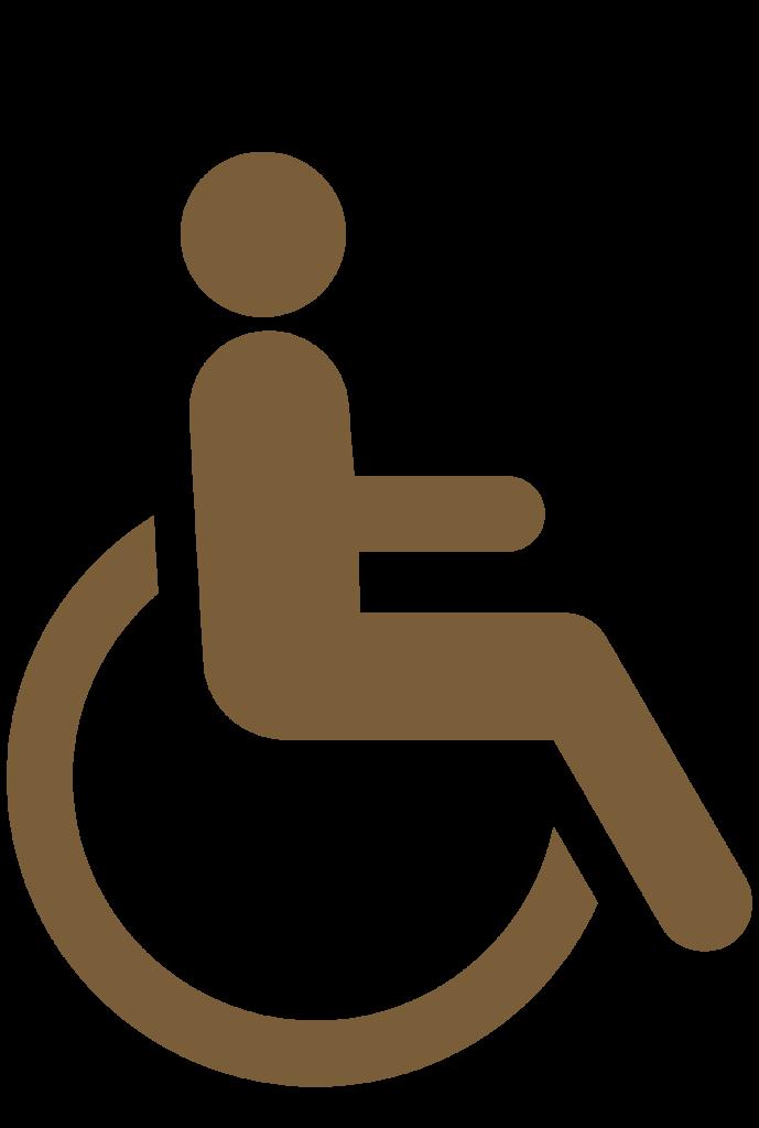 Icônes accessible aux handicapés
